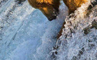 La limpieza de los ríos fuente de la vida